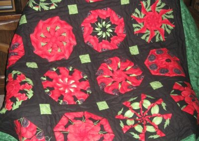 Kaleidoscope Quilting Customer Quilting Photo
