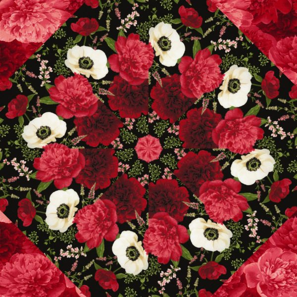 Carina Kaleidoscope Block
