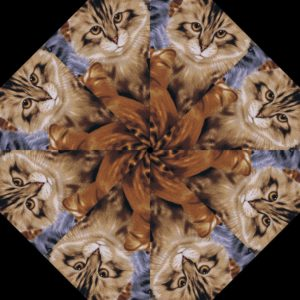 Cats Kaleidoscope Block