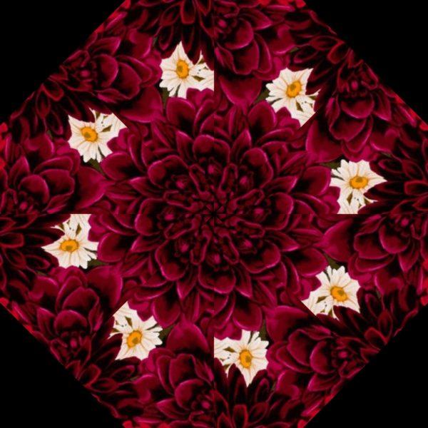 Dahlia Kaleidoscope Kit