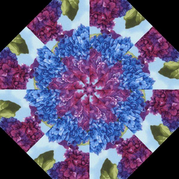 Hydrangea H 9