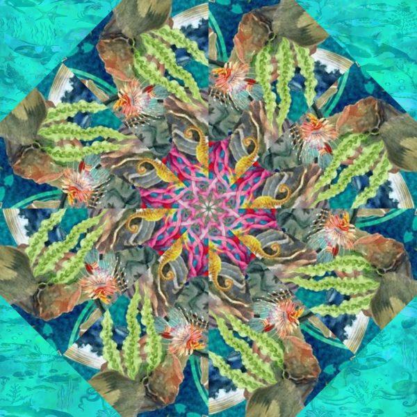 calypso 10