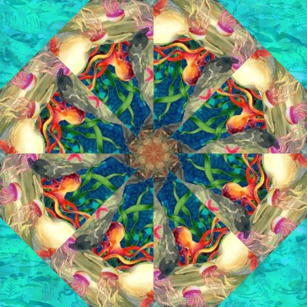 calypso 11