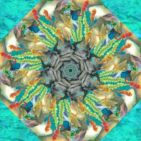 calypso 5