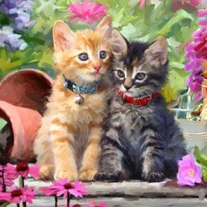 Kitten Panel