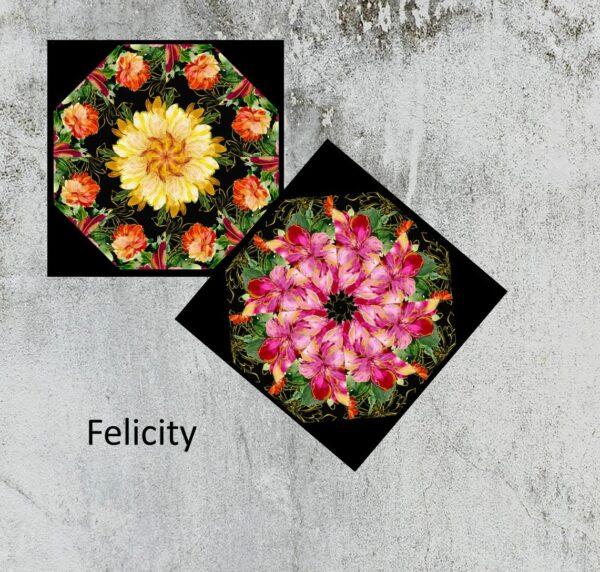 felicity sample