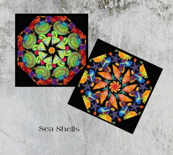 Sea Shells SC MR