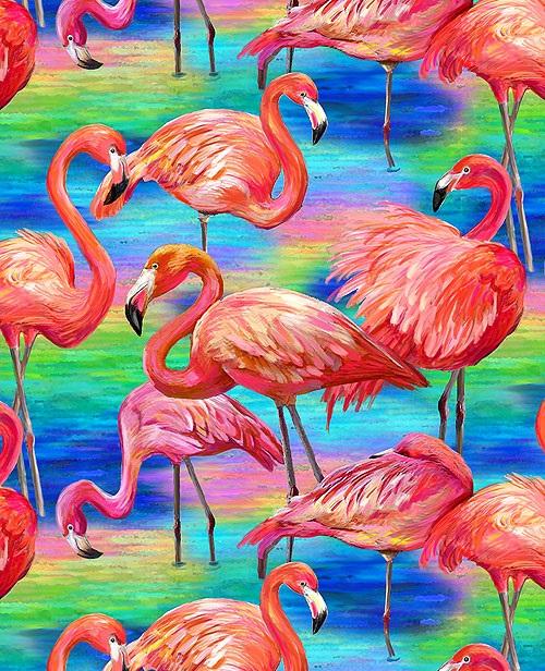 Flamingos eq