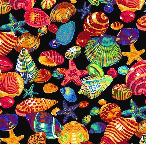 shells spring creative
