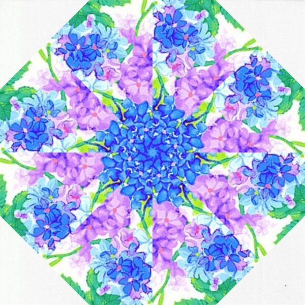 blossom w6