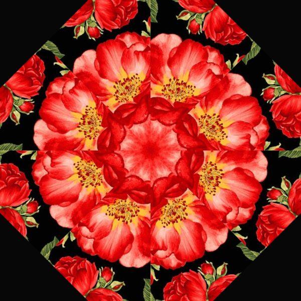 Garden Rose B 6