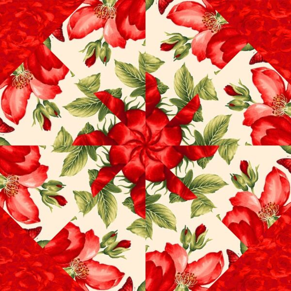 Garden Rose C 3