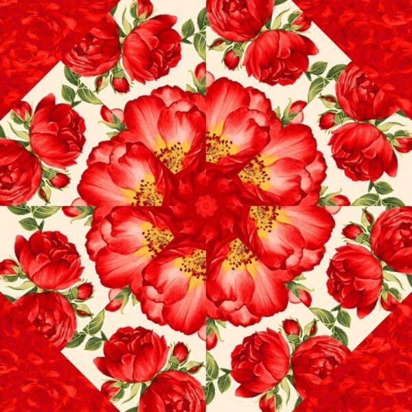 Garden Rose C 4