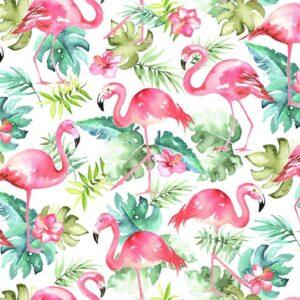 flamingos watercolor