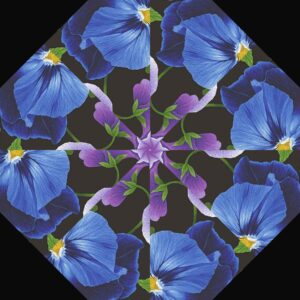 Large Pansy 11