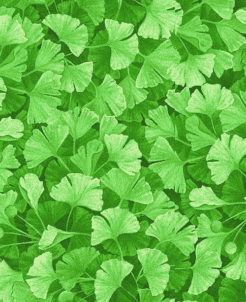 forest magic ginko leaves