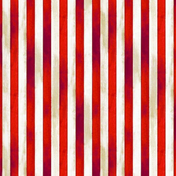 We the people stripe