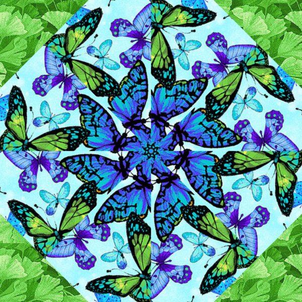 fm butterflies 1
