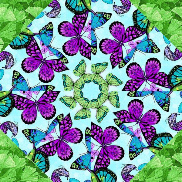 fm butterflies 2