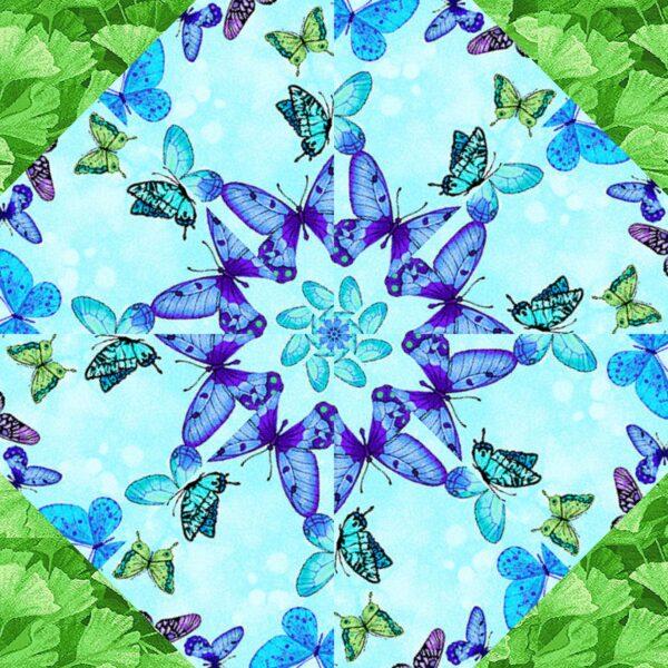 fm butterflies 7