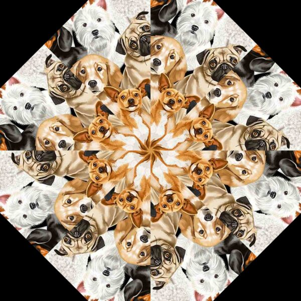 dogs 8